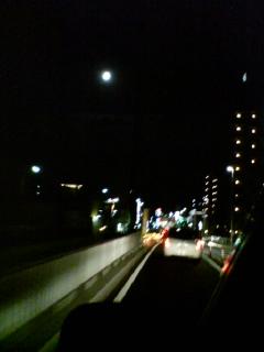 image/hide527-2006-10-07T19:04:49-1.jpg